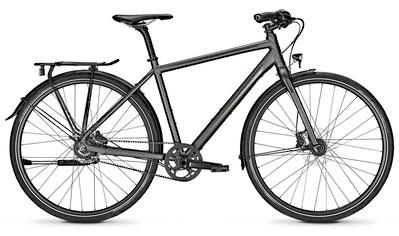 Raleigh Urbanbike »NIGHTFLIGHT PREMIUM«, 8 Gang Nabenschaltung kaufen