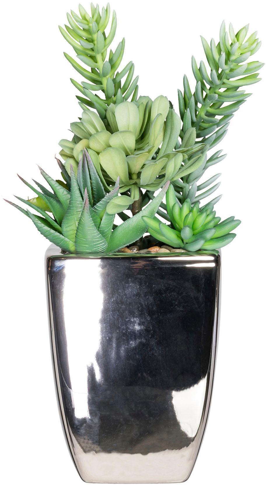 Künstliche Zimmerpflanze »Sukkulenten«arrangement, ca. 38 cm | Dekoration > Dekopflanzen > Pflanzen | Grün | Kunststoff
