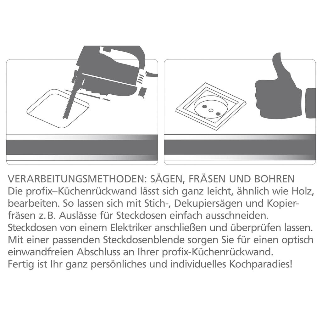 Küchenrückwand - Spritzschutz »profix«, Pusteblume, 220x60 cm