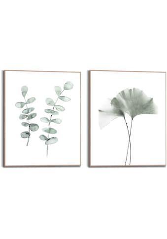 Reinders! Wandbild »Wandbilder Set Botanisch Naturmotiv Eukalyptus - Ginkgo -... kaufen