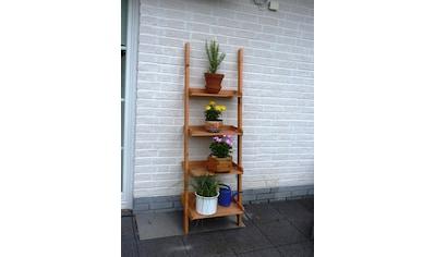 promadino Blumenständer »Blummentreppe Helma«, BxTxH: 58x46x177 cm kaufen