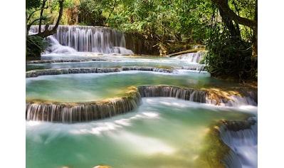 Papermoon Fototapete »Forest Waterfall Laos« kaufen