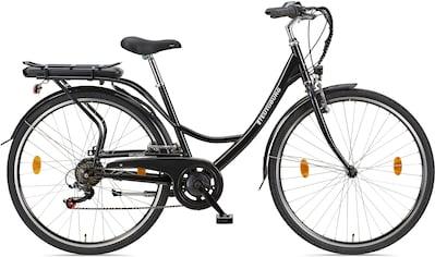 Teutoburg E-Bike »Senne« kaufen