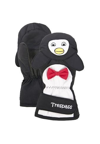 Trespass Fäustlinge »Kinder Winter Flip Flap« kaufen