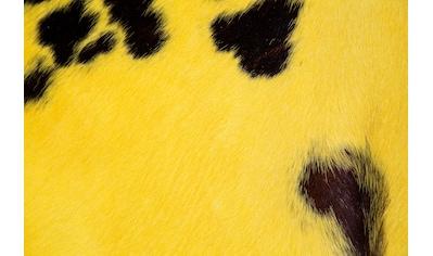 Trendline Fellteppich »Rinderfell Norman«, fellförmig, 3 mm Höhe, echtes Rinderfell,... kaufen