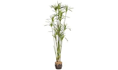 Creativ green Kunstgras »Zyperngras mit Blüten« (1 Stück) kaufen