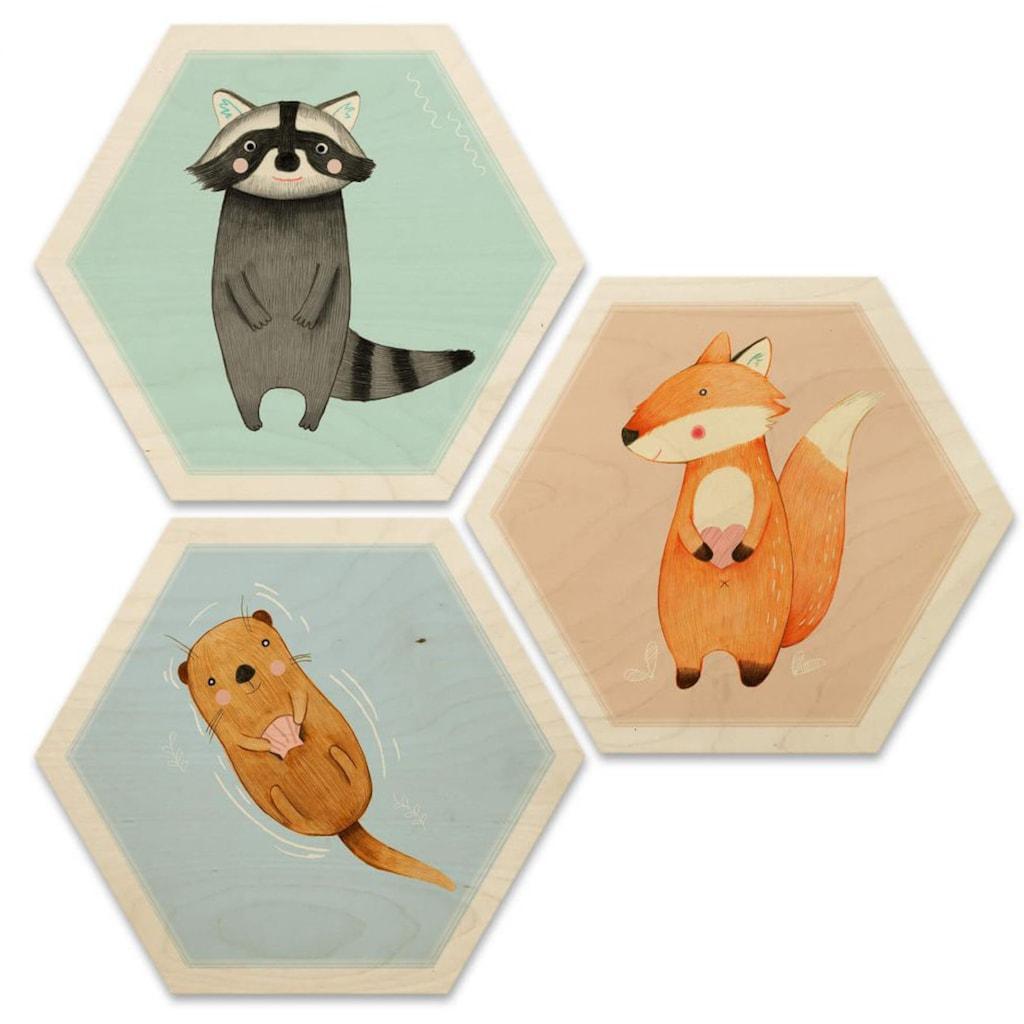 Wall-Art Mehrteilige Bilder »Hexagon Collage Die wilden Drei«, (Set, 3 St.)