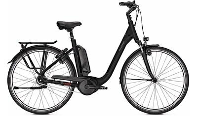 Raleigh E - Bike »Kingston«, 8 Gang 250 W kaufen