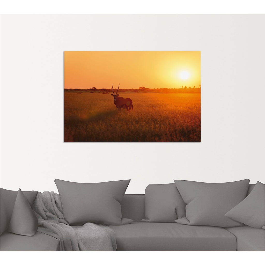 Artland Wandbild »Oryxantilope im Sonnenaufgang«, Wildtiere, (1 St.), in vielen Größen & Produktarten - Alubild / Outdoorbild für den Außenbereich, Leinwandbild, Poster, Wandaufkleber / Wandtattoo auch für Badezimmer geeignet