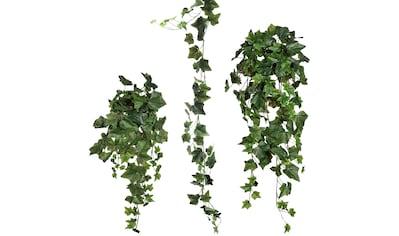 Creativ green Kunstranke »Efeugirlande« (Set, 3 Stück) kaufen