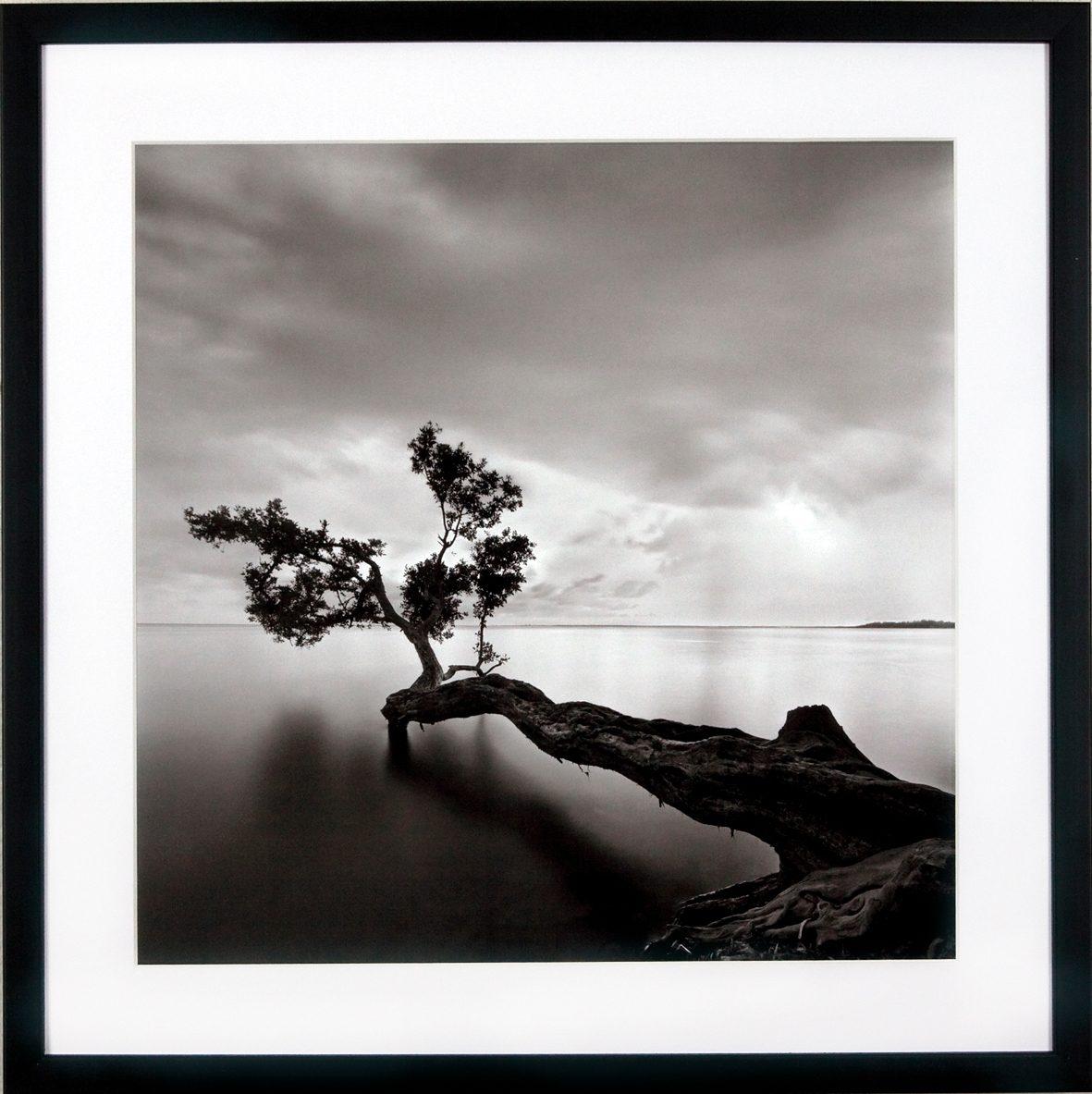 G&C Kunstdruck Levy: Beach Motiv 4 Landschaft | Dekoration > Bilder und Rahmen > Poster | Schwarz | G&C