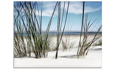Artland Glasbild »Düne«, Strand, (1 St.) kaufen