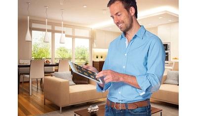 SCHELLENBERG Funk-Empfangsmodul »SH1«, Funk Smart Home Steuerzentrale kaufen