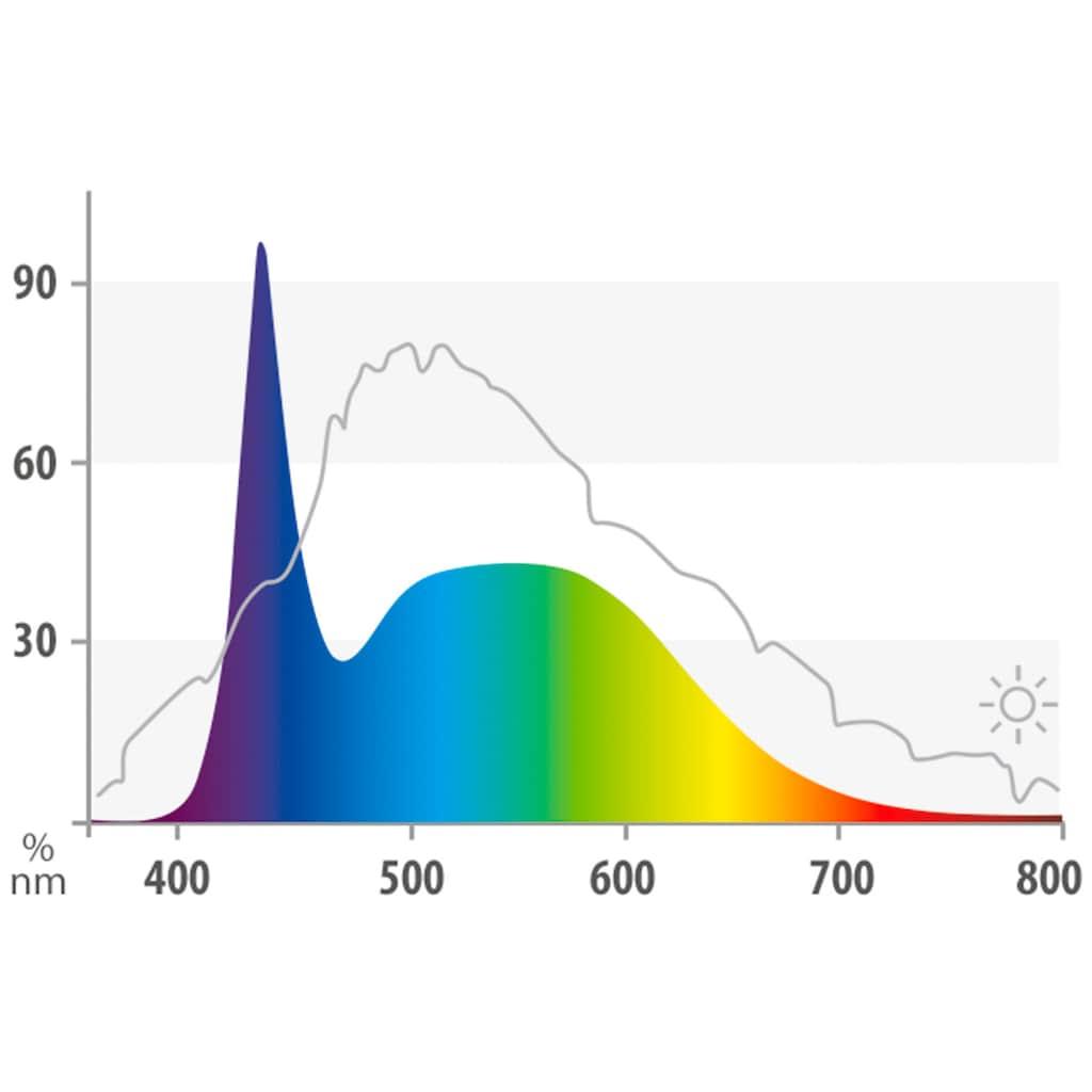 JUWEL AQUARIEN LED Aquariumleuchte »MultiLux«, Warmweiß-Kaltweiß