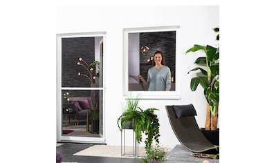 hecht international Insektenschutz-Fenster, BxH: 130x150 cm kaufen