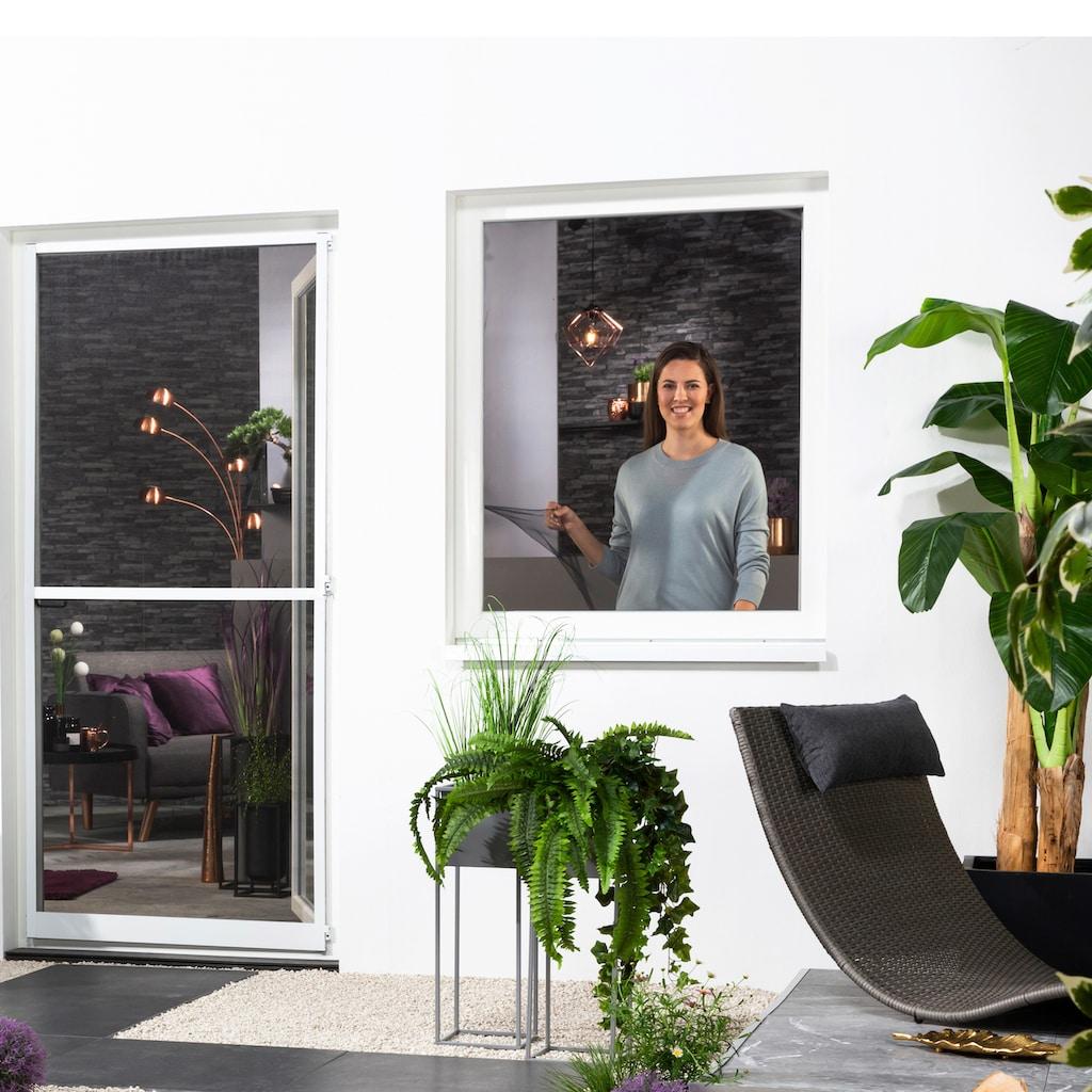 hecht international Insektenschutz-Fenster, BxH: 130x150 cm