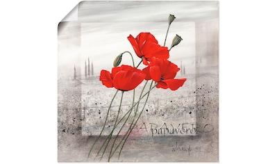 Artland Wandbild »Mohnblumen« kaufen