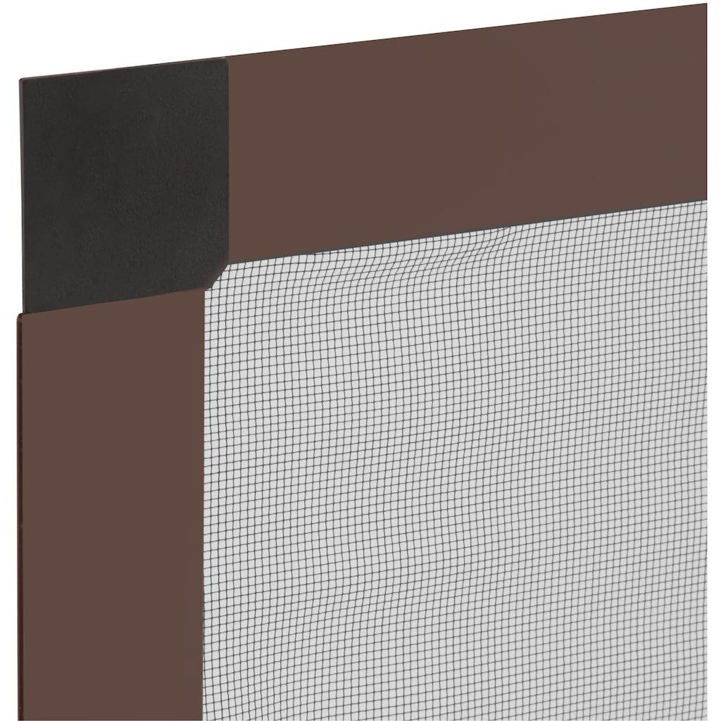 hecht international Insektenschutz-Fenster »COMPACT«, braun/anthrazit, flächenbündig, BxH: 100x120 cm