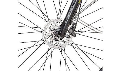 Prophete E - Bike »eSport«, 10 Gang Shimano Deore Schaltwerk, Kettenschaltung, Mittelmotor 250 W kaufen