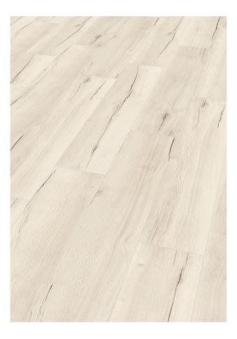EGGER Laminat »HOME Creston Eiche weiss«, 2,541 m²/Pkt., Stärke: 8 mm kaufen