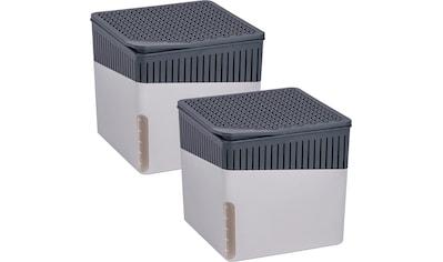 WENKO Luftentfeuchter »Cube Beige«, 500 g, 2er Set kaufen