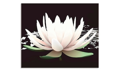 Artland Küchenrückwand »Zwei Lotusblumen auf dem Wasser« kaufen