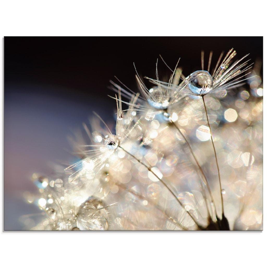 Artland Glasbild »Pusteblume Fantasie«, Blumen, (1 St.)