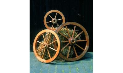 Promadino Wagenrad, klein kaufen