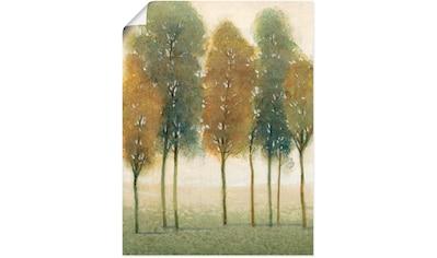 Artland Wandbild »Hinter den Bäumen II«, Bäume, (1 St.), in vielen Größen &... kaufen