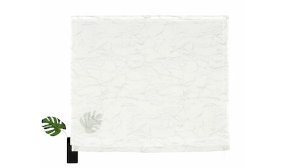 my home Raffrollo »Bamian«, mit Klettschiene kaufen