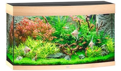 JUWEL AQUARIEN Aquarium »Vision 180 LED«, 180 Liter, BxTxH: 92x41x55 cm, in versch. Farben kaufen