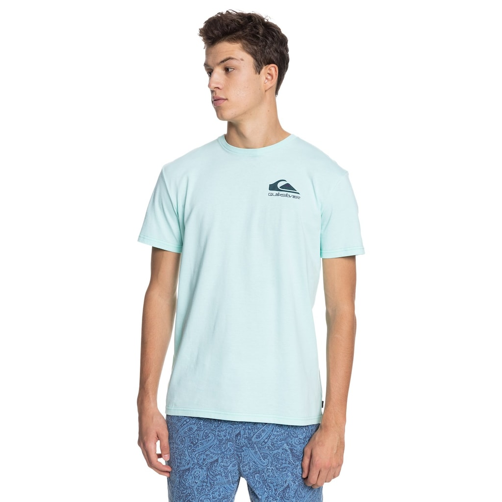 Quiksilver T-Shirt »Reflect«