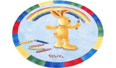 Felix der Hase Kinderteppich »FE-412 Regenbogen«, rund, 6 mm Höhe, Stoff Druck, weiche Mircofaser kaufen