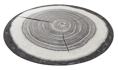 Teppich, »Baumstamm«, HANSE Home, rund, Höhe 6 mm, maschinell getuftet kaufen