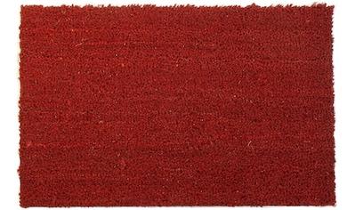 Primaflor-Ideen in Textil Fußmatte »KOKOS«, rechteckig, 17 mm Höhe, Schmutzfangmatte,... kaufen