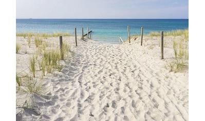 Consalnet Vliestapete »Strandweg und Meerblick«, verschiedene Motivgrößen, für die Küche kaufen