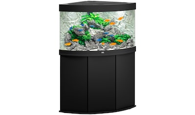 JUWEL AQUARIEN Aquarien - Set »Trigon 190 LED + SBX Trigon 190«, BxTxH: 98,5x70x133 cm, 190 l kaufen