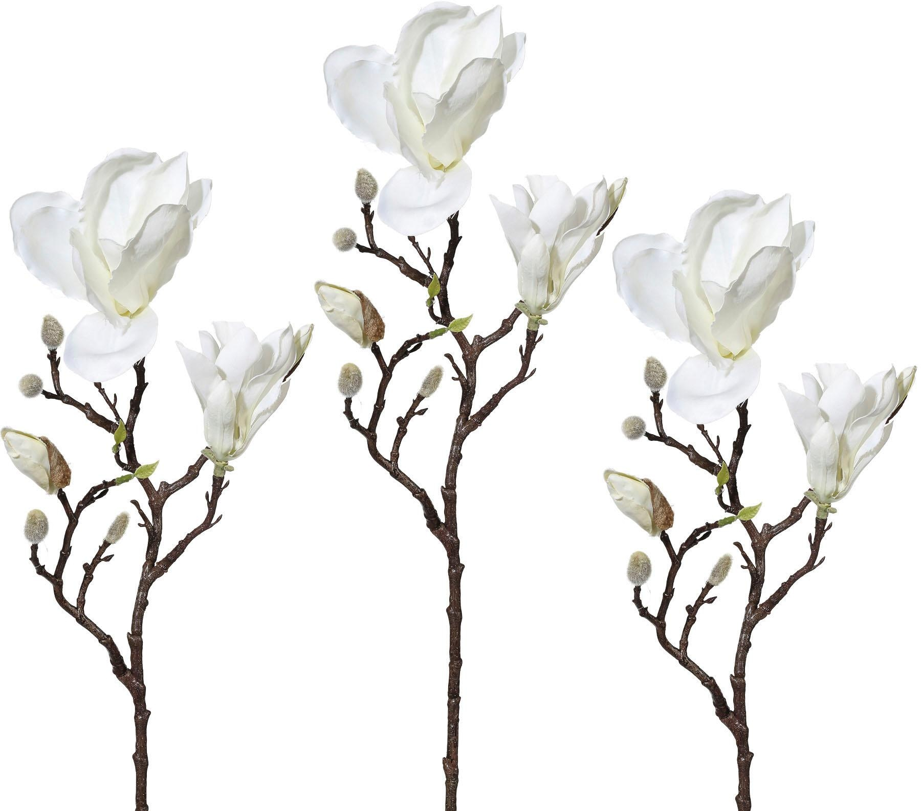 Kunstzweig Magnolie (3 Stück) Wohnen/Accessoires & Leuchten/Wohnaccessoires/Kunstpflanzen/Kunstblumen