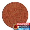 TETRA Fisch-Flockenfutter »Pro Colour«, 2x250 ml