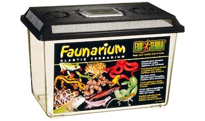 EXO TERRA Terrarium »Faunarium«, BxTxH: 30x19,5x19,5 cm kaufen