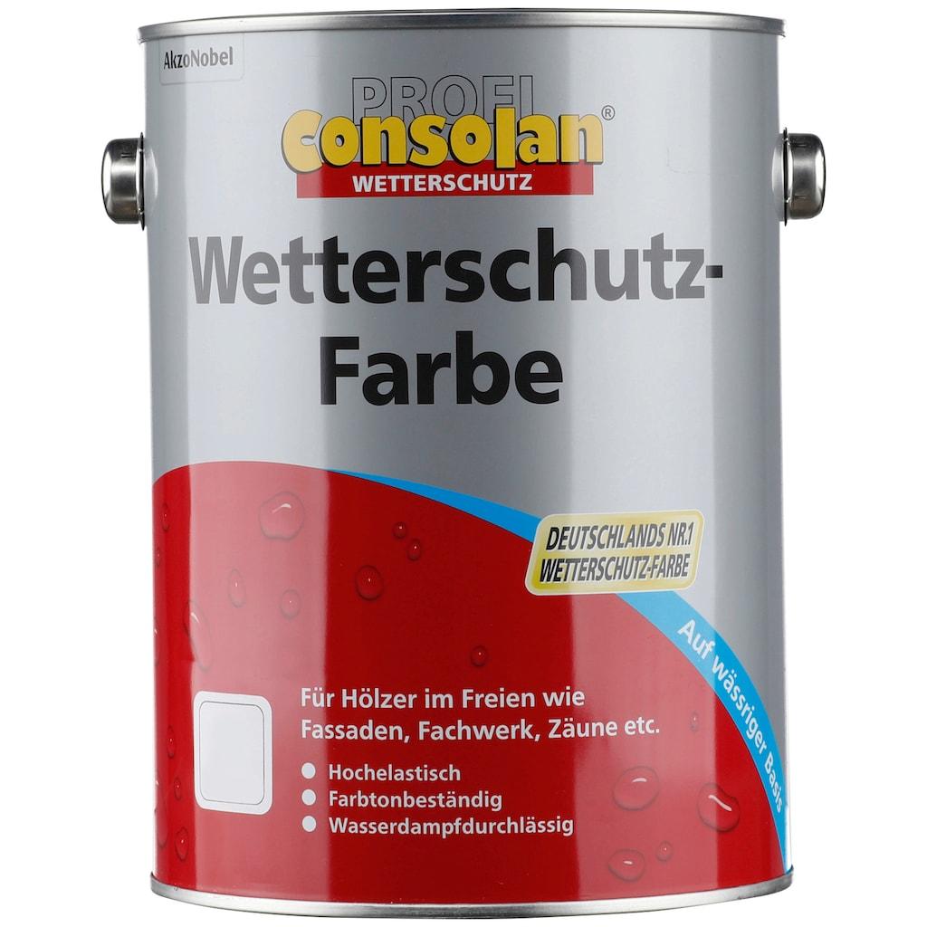 Consolan Wetterschutzfarbe »Profi Holzschutz«, 2,5 Liter, braun