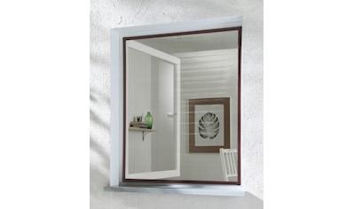 hecht international Insektenschutz-Fenster »BASIC«, braun/anthrazit, BxH: 80x100 cm kaufen