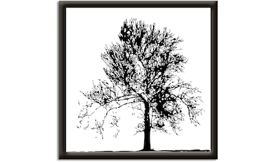 Artland Wandbild »Baum« kaufen