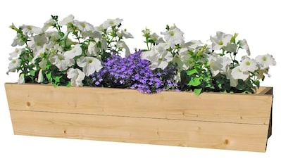 OUTDOOR LIFE PRODUCTS Blumenkasten , B: 130 cm, Fichtenholz kaufen