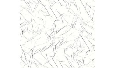 DELAVITA Plissee nach Maß »Black & White«, Lichtschutz, mit Bohren, verspannt,... kaufen
