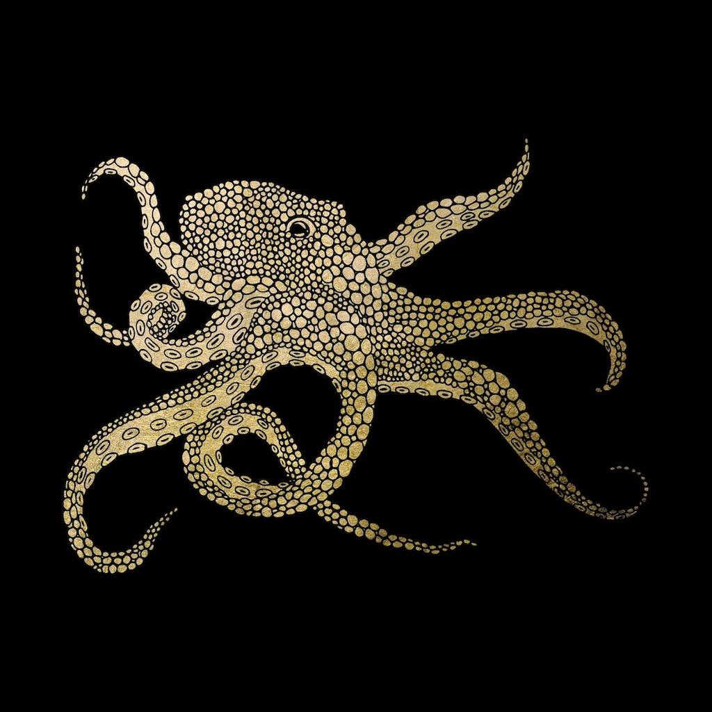 Leonique Acrylglasbild »Oktopus«