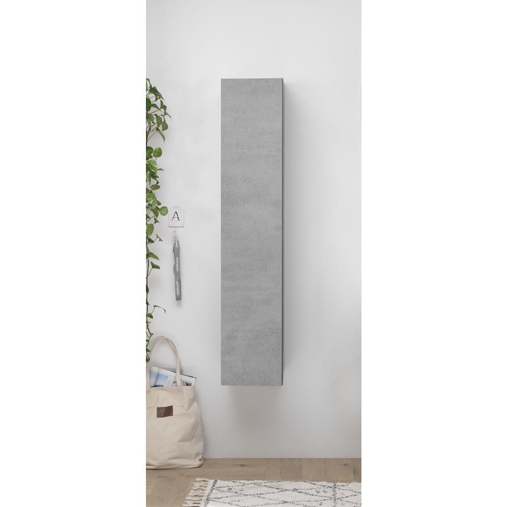 LC Hängeschrank, Höhe 138 cm