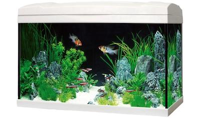 Marina Aquarien-Set »Complete 54 LED«, 54 Liter, BxTxH: 61x32x37,5 cm kaufen