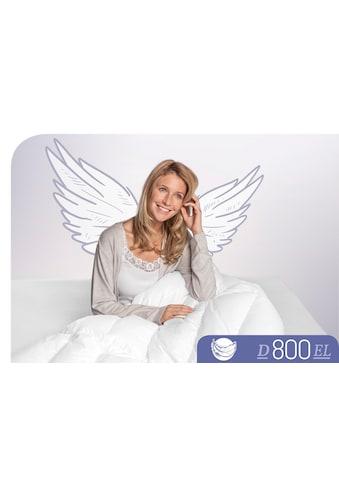 Schlafstil Gänsedaunenbettdecke »D800«, extraleicht, Füllung 100% Gänsedaunen, Bezug... kaufen