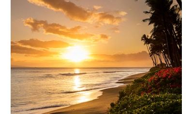 Papermoon Fototapete »Tropical Sunset Kaanapali Beach« kaufen